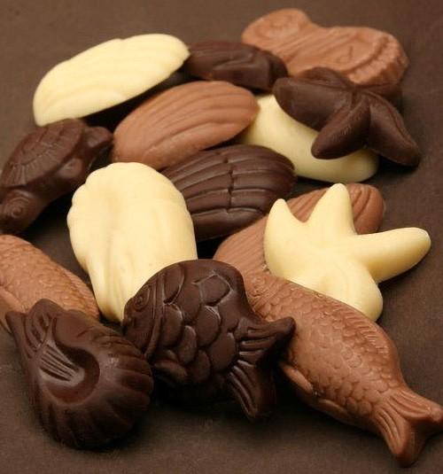 Meeresfrüchte Mischung aus Vollmilch- weisser und Zartbitterschokolade